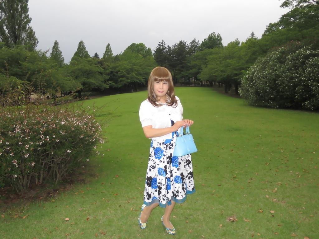 青薔薇柄ワンピA(1)