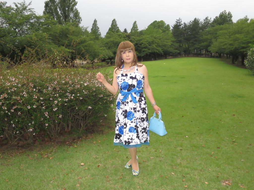 青薔薇柄ワンピA(4)