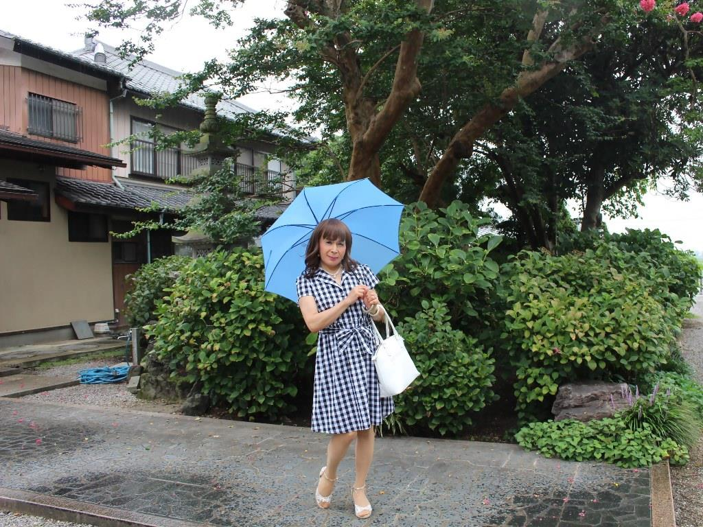 ギンガムチェックワンピ雨傘A(5)