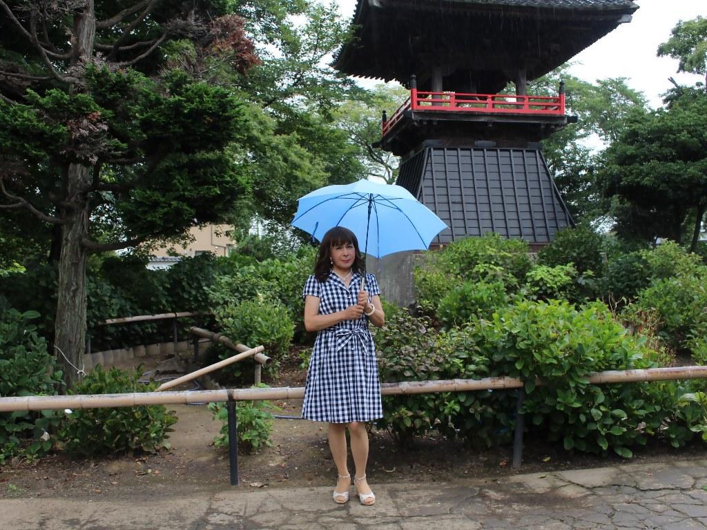 ギンガムチェックワンピ雨傘B(6)