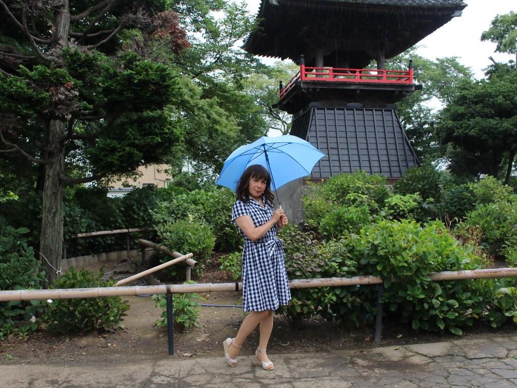 ギンガムチェックワンピ雨傘B(7)