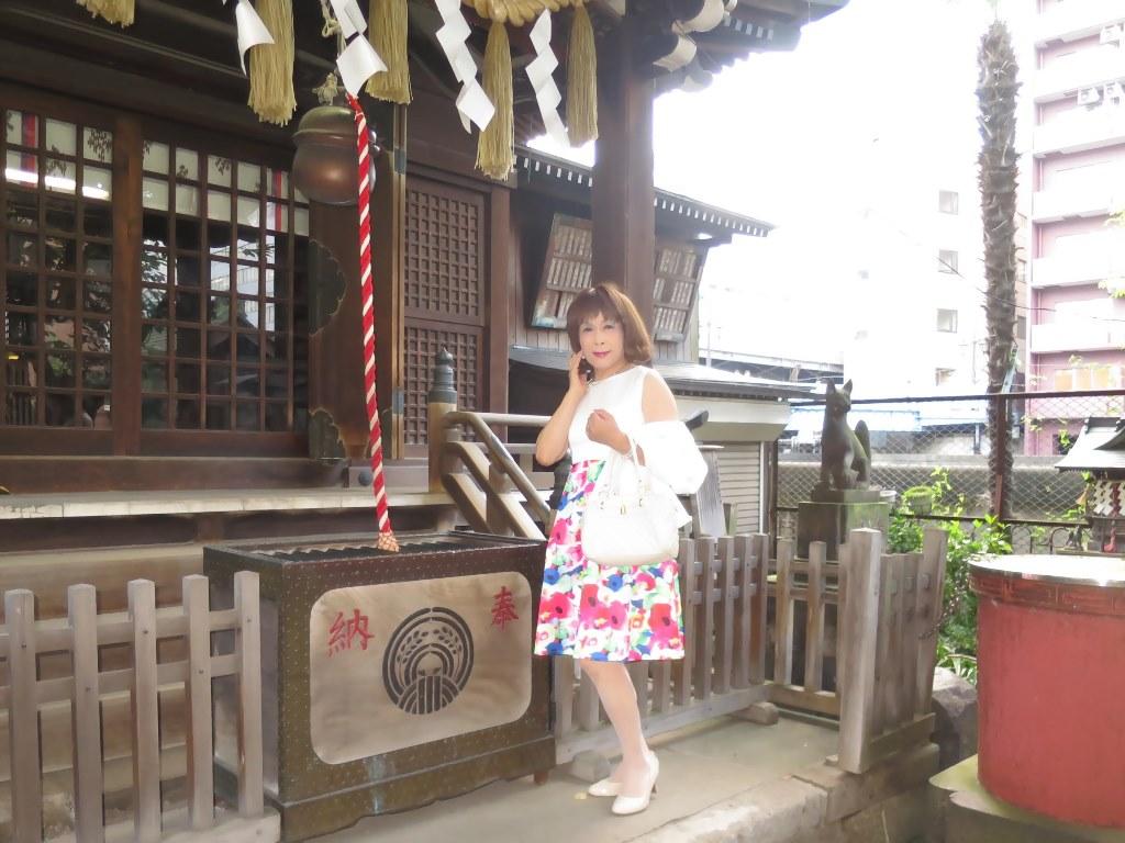 秋葉原柳森神社にて(5)