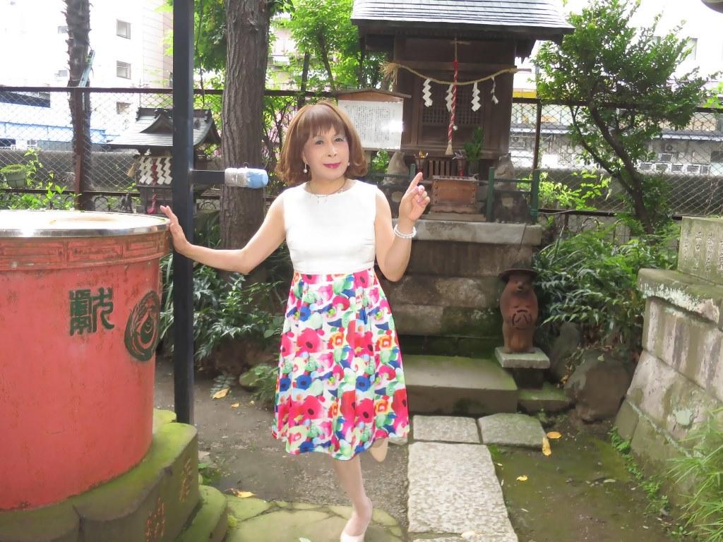 秋葉原柳森神社にて(6)