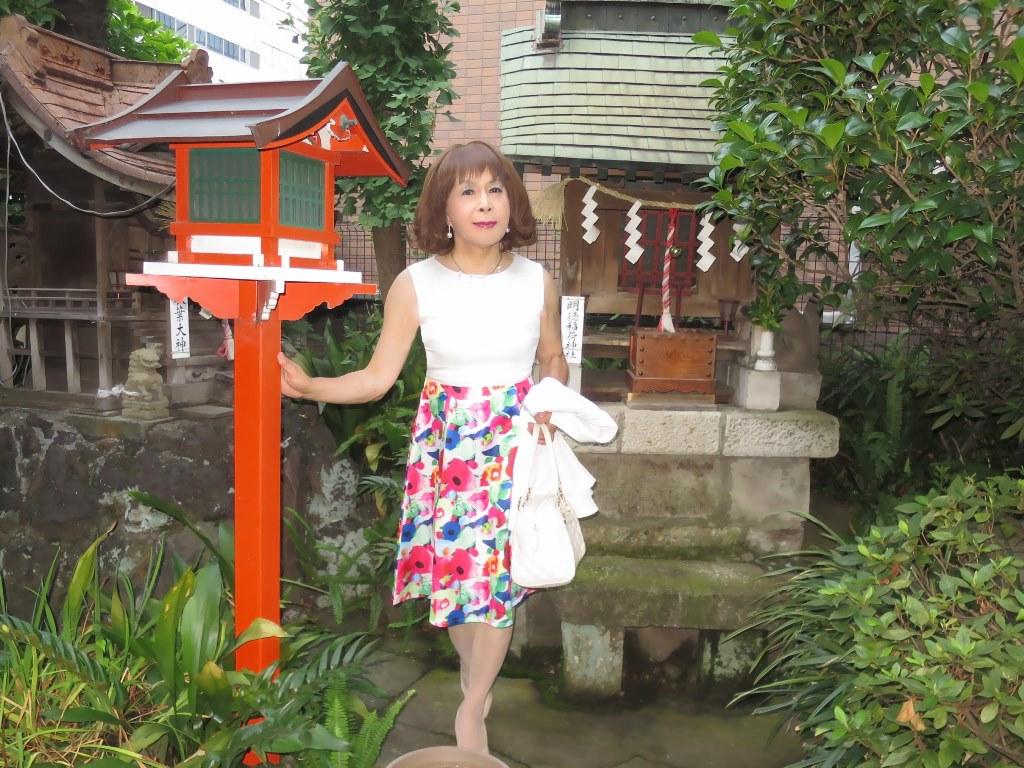 秋葉原柳森神社にて(7)