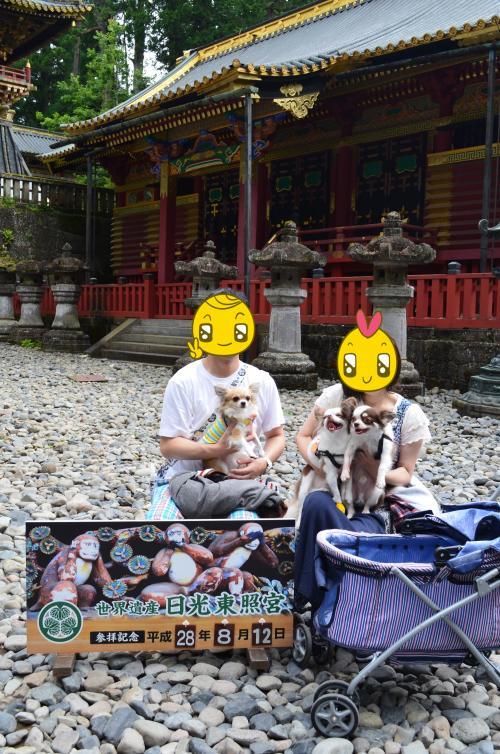 DSC_0515_convert_20160831113645.jpg