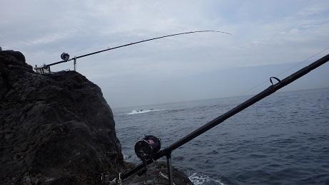 神子元島0215