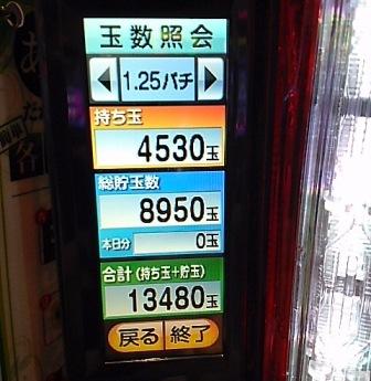 DSC_02037.jpg