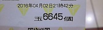 DSC_11246.jpg