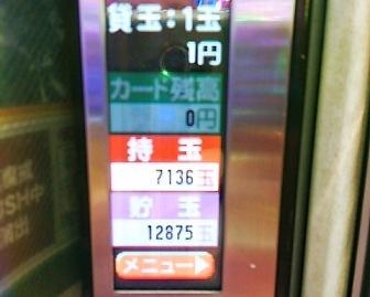 DSC_11367.jpg