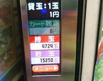 DSC_11700.jpg