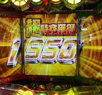 DSC_11750.jpg