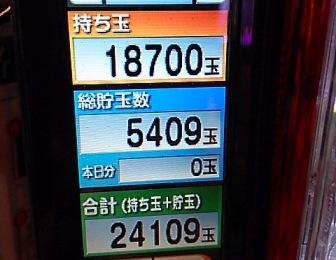 DSC_11777.jpg