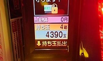 DSC_12691.jpg
