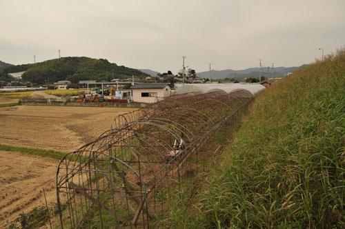 hausu-161021-l.jpg