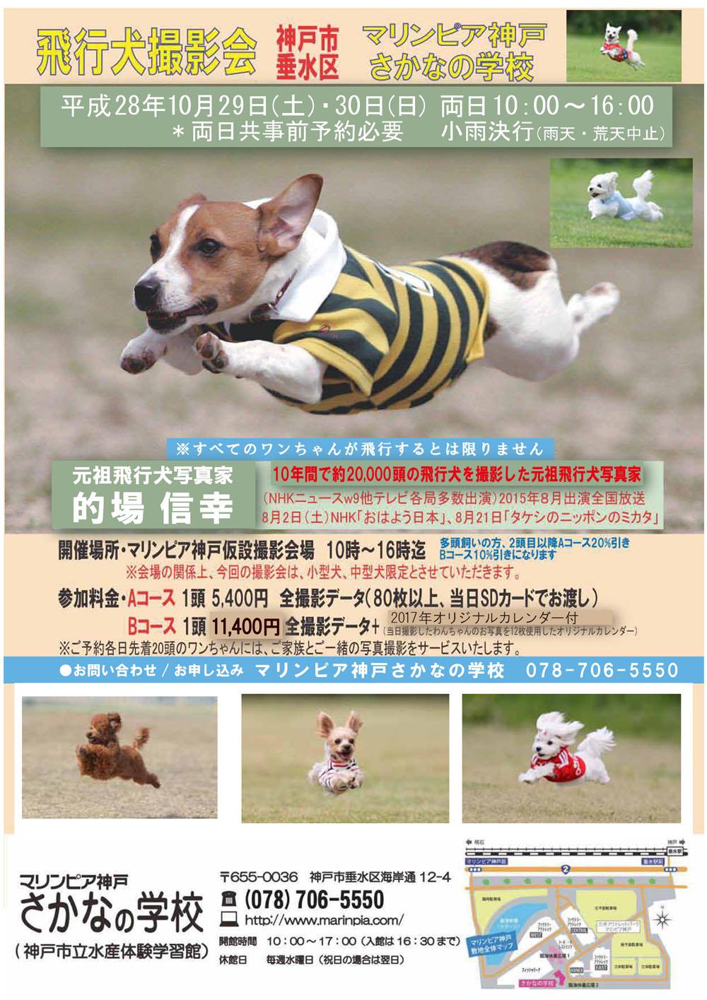 hikouken0001.jpg