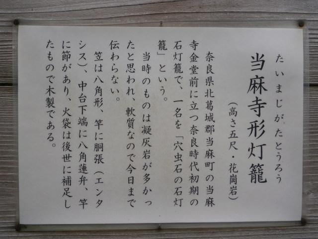 PA220156.jpg