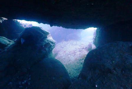 カメ穴トンネルweb