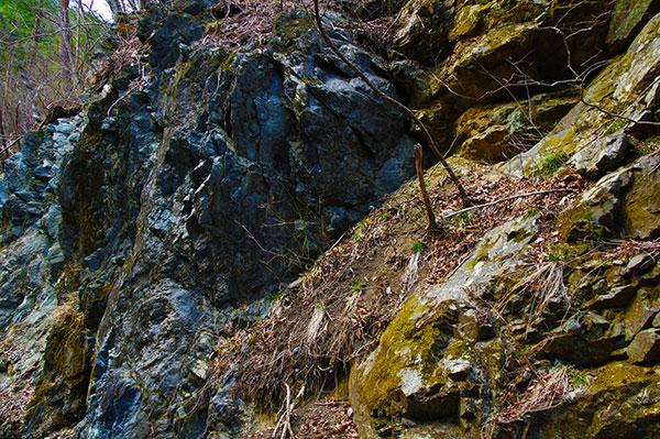 三陸の5億年前の地層の露頭