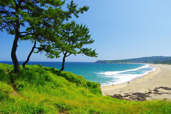 夏の種差海岸