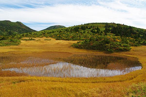 八甲田山 田茂萢岳の湿原