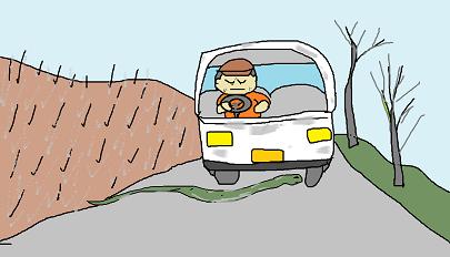 蛇の道路横断