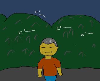 夜中の鳴き声