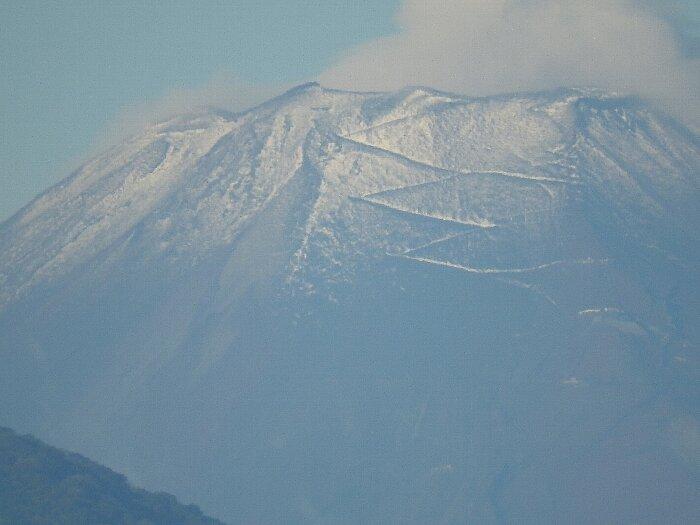 初冠雪 (1)s
