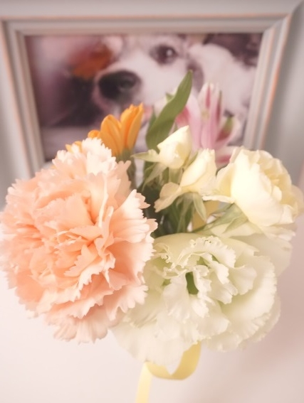 Tiffanyお誕生日の日 (5)