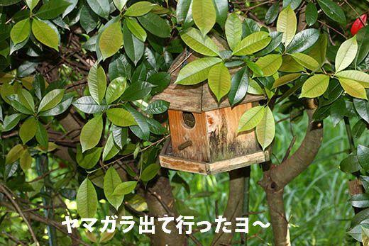 IMG_7804.jpg