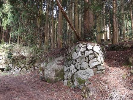 027杉津、河野丸砦跡麓の畑の石垣