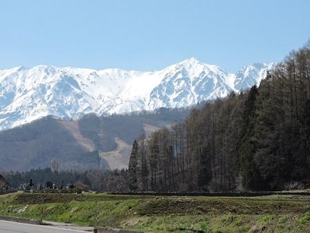 006糸魚川街道より白馬岳を望む2016年4月