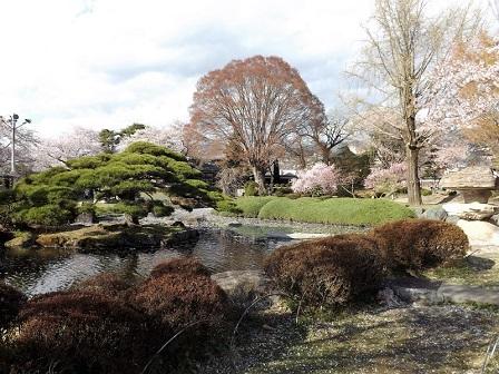 30高島城内庭園2016年4月