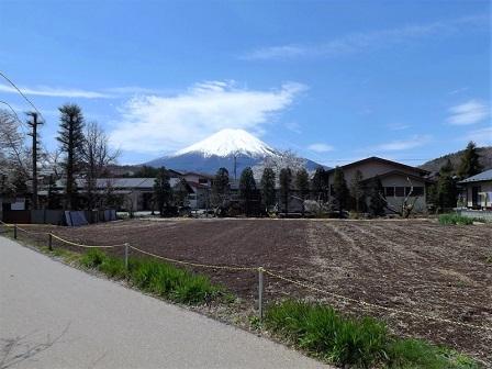 34忍野村から富士山を仰ぐ(その2)2016年4月