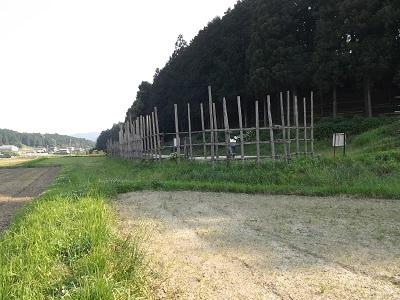 編集_名古屋研修旅行下見2016年5月 (10)