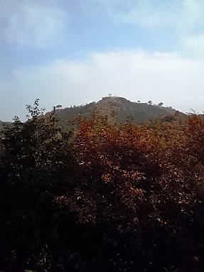 2010年11月城の会研修播磨、但馬の旅 (此隅山城5)
