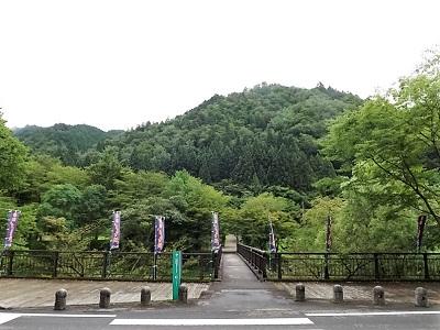 篠脇城遠望(北から)