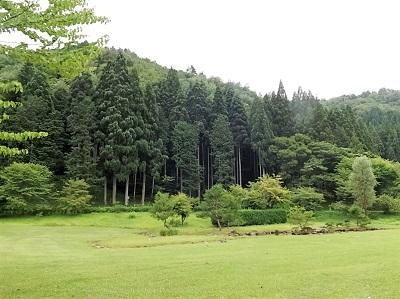 東氏館跡庭園