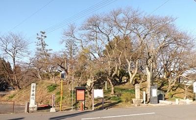 小丸城跡遠望(南から)