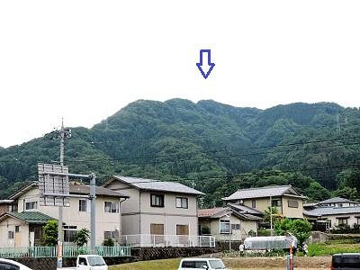 波多野城跡遠望(北から)
