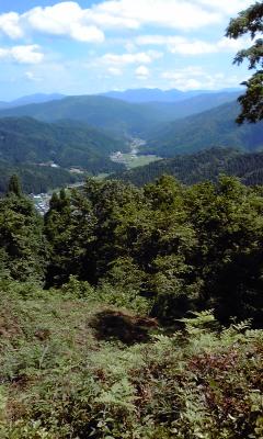 7三峰城本丸から一乗谷を望む