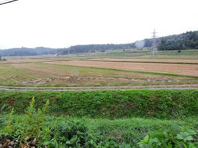 2016年10月18、19日下越の城館めぐり (平林城跡)編集分 (22)