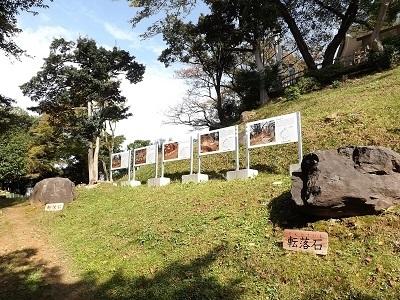 東海の名城見学研修2016年10月30日 (ブログ用) (7)