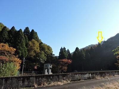 池田町梅田氏庭園他の踏査2016年11月13日 (3)