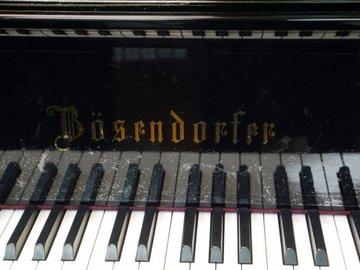 Bosendorfer-1