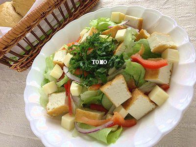 厚揚げのサラダ