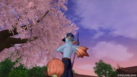 桜夕暮れの_R