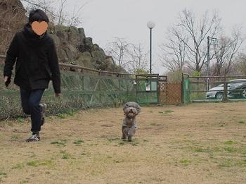 ジジさんうちのこ記念旅行20160310-27