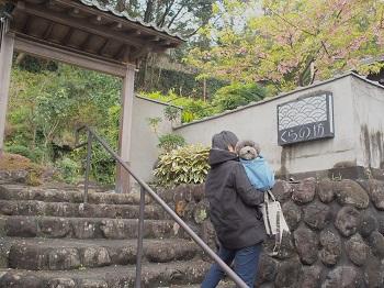 ジジさんうちのこ記念旅行20160311-4