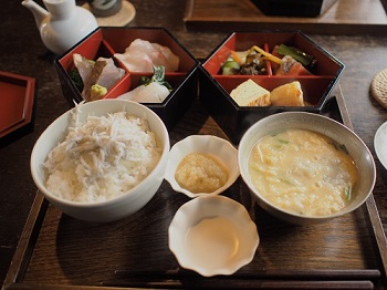 ジジさんうちのこ記念旅行20160311-9