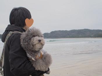 ジジさんうちのこ記念旅行20160311-15